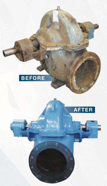 Edelmann pump repair service